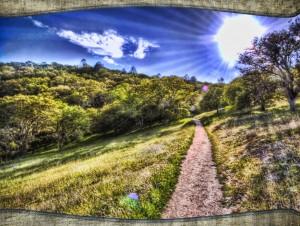 The path light glory