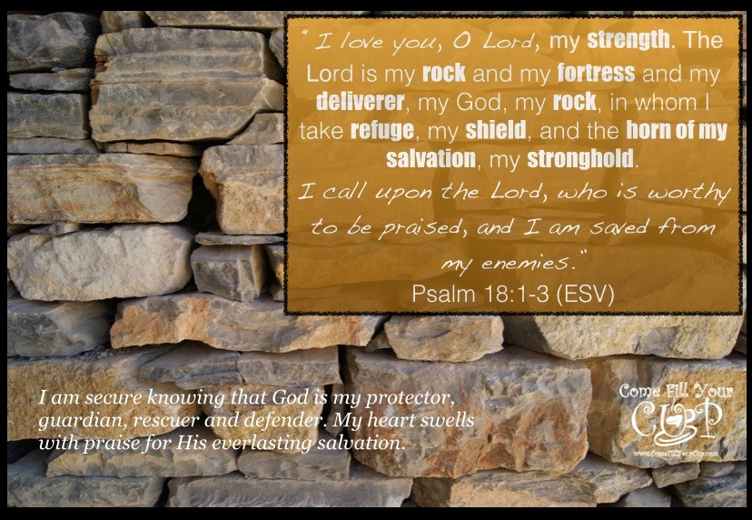 The Lord is my strength... rock... fortress... deliverer... refuge... shield... horn of salvation... stronghold!
