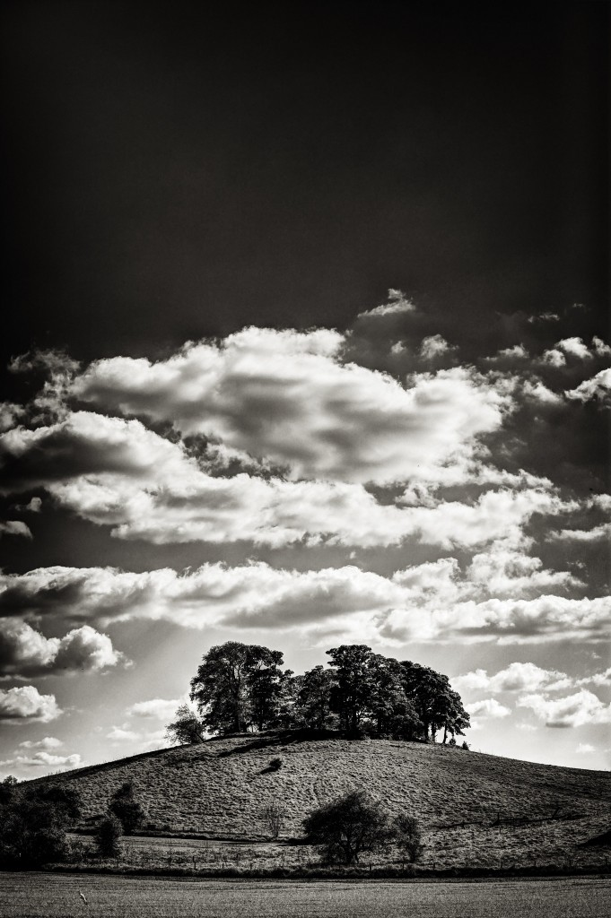 tree_and_clouds