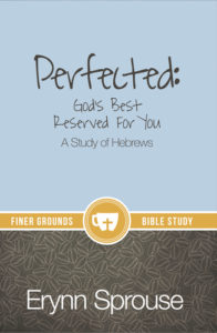 Perfected_Book_Cover__76267.1443461480.380.500