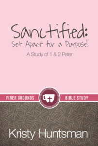 Sanctified_FrtCvr__34960.1396284933.380.500