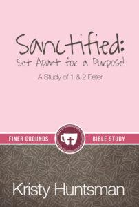 Sanctified_FrtCvr__34960.1396284933.380.500