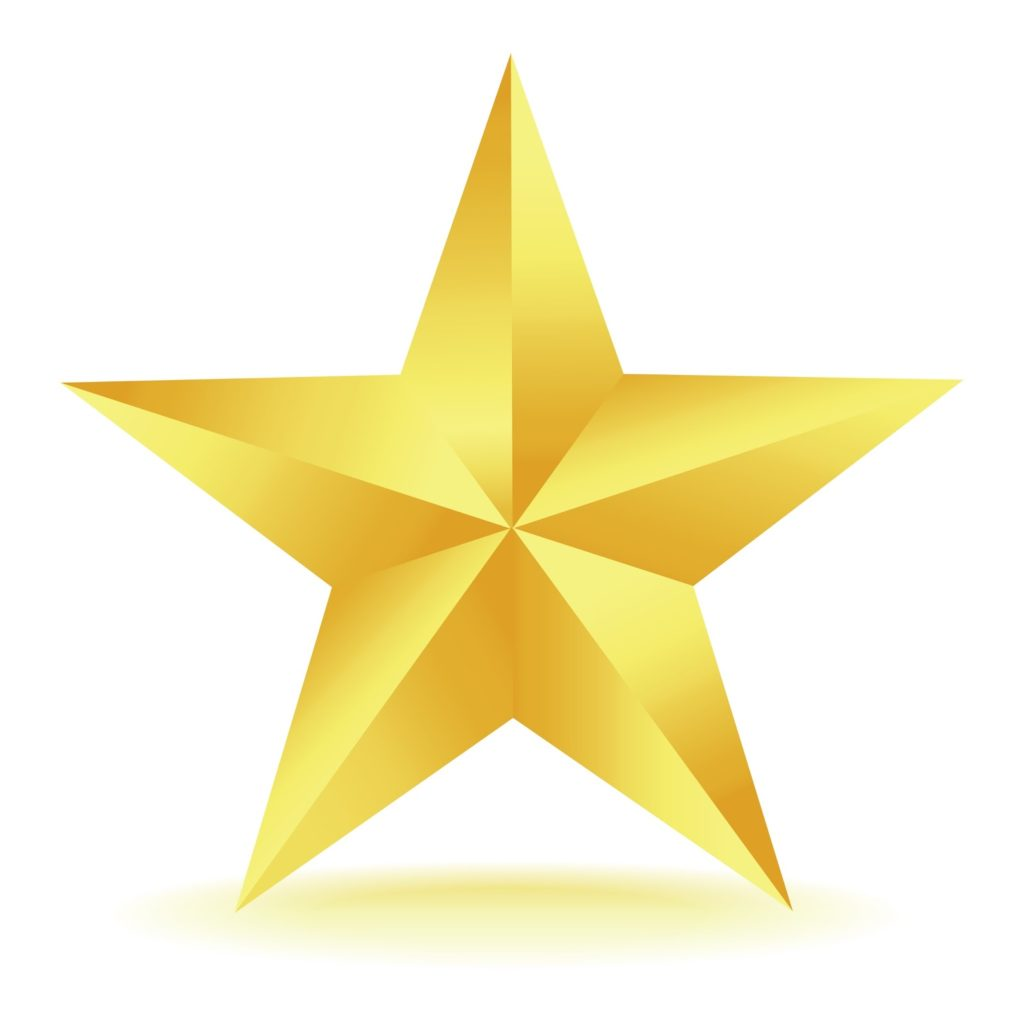 This image has an empty alt attribute; its file name is gold-star-1024x1024.jpg